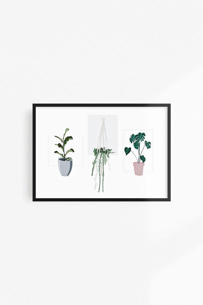 Three plants print